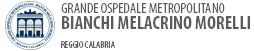 Logo Ospedale Metropolitano RC